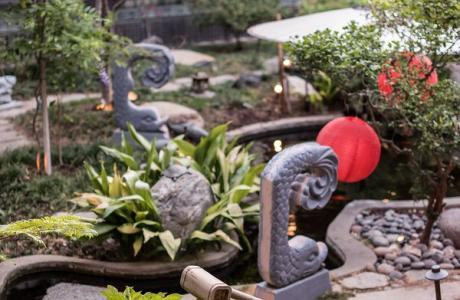 Detailed Pic Of Garden