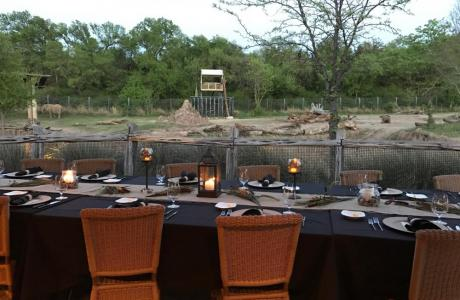 Dinner on the deck in the Savanna