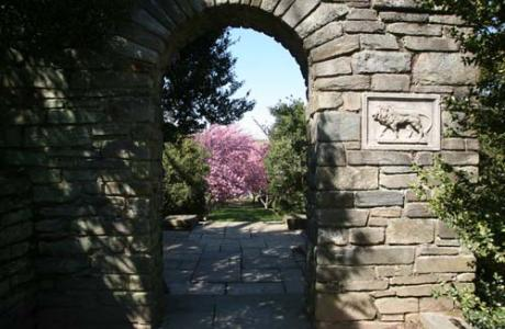 Garden arch with view to cherry trees.