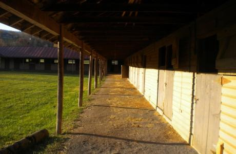 44 Stalls, Pastures and 3 Show rings- 2 grass and one Sand