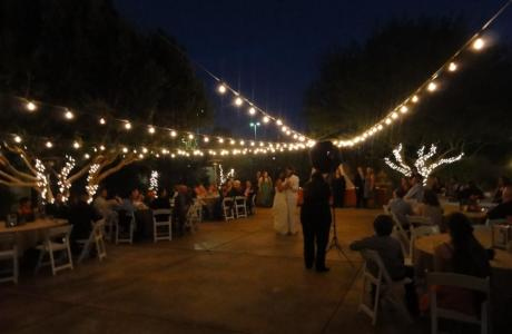 Garden Courtyard Bistro Lights