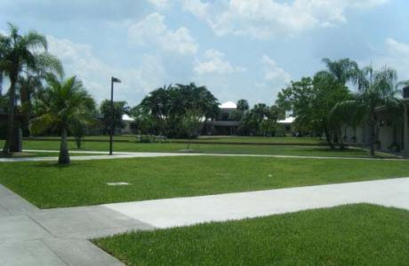 A view of campus