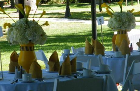 Bridal Shower in the Gardens