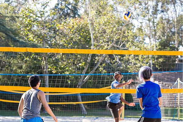 UCLA Recreation - Volleyball