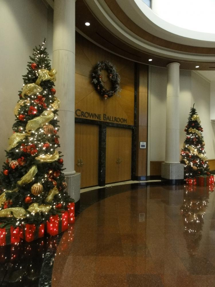 Christmas Trees and festive decorations during the holidays
