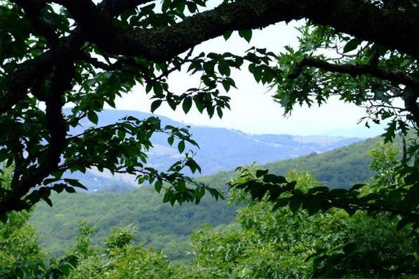 Western North Carolina view from Lutherock