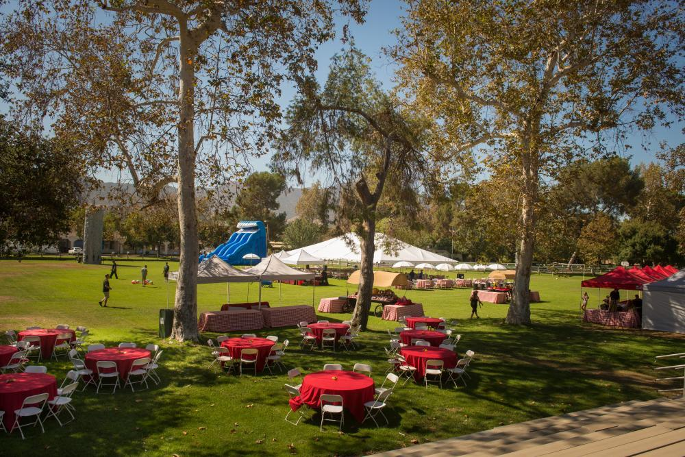 Corporate Picnic set-up