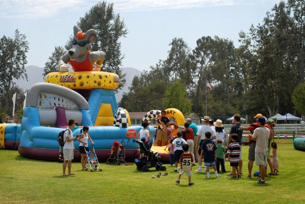 Inflatables for company picnic