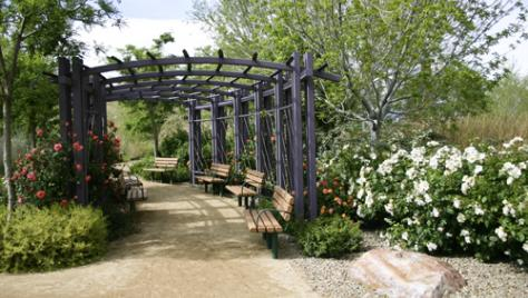 Ideal Las Vegas Outdoor Wedding Sites