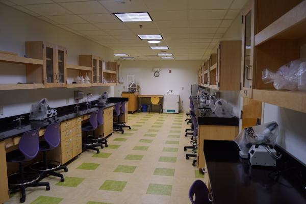 View of Wright Group Lab 103