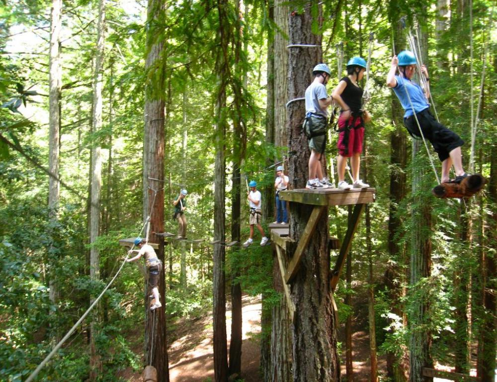 High Element Ropes Course