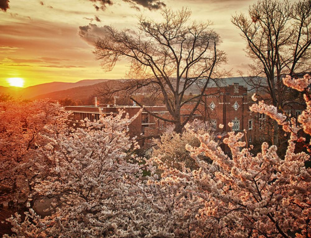 Spring Sunset over Alumni Gym