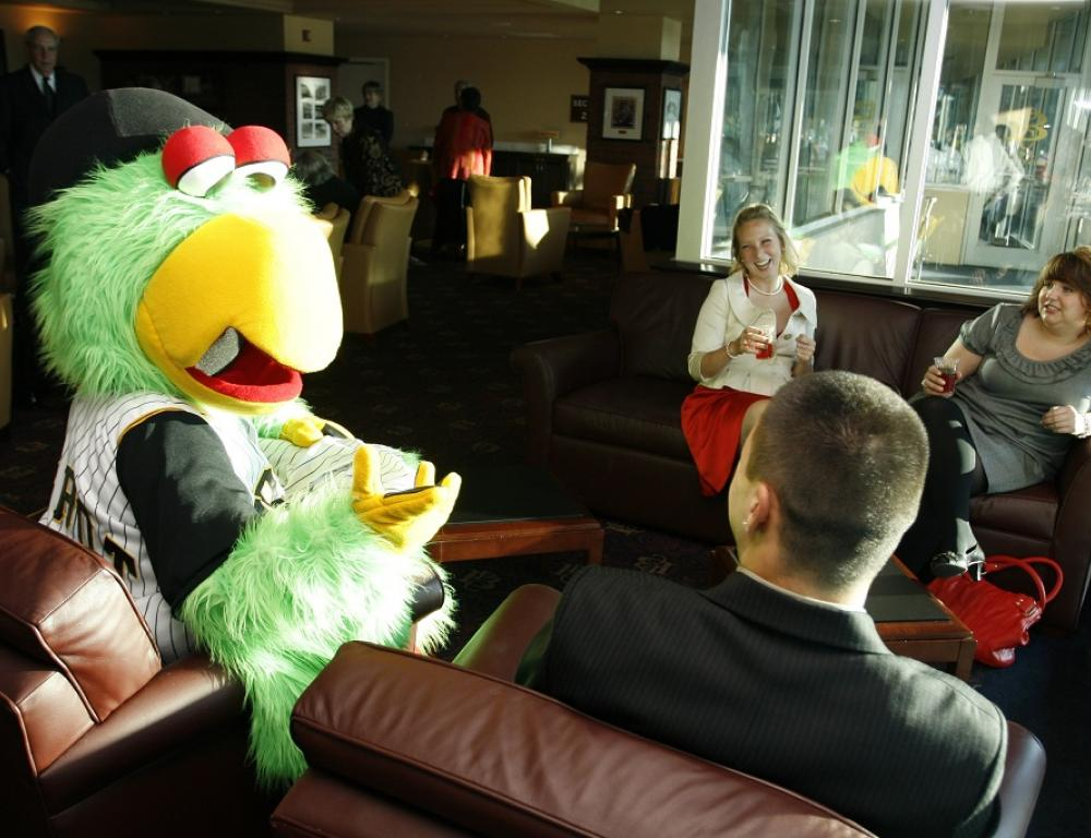 Pirate Parrot Appearances are available.