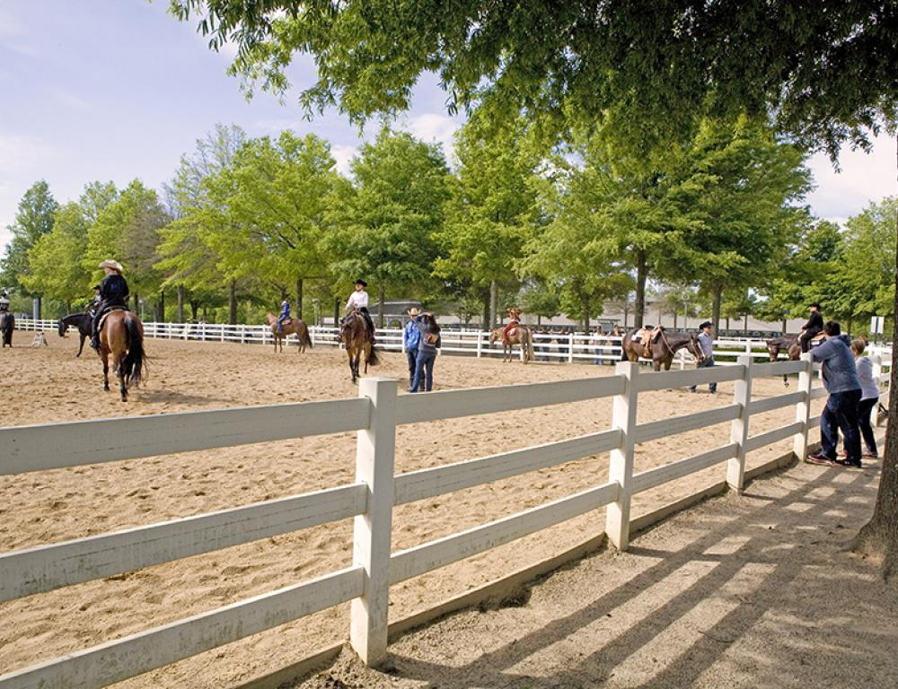 Ten various size auxiliary arenas available