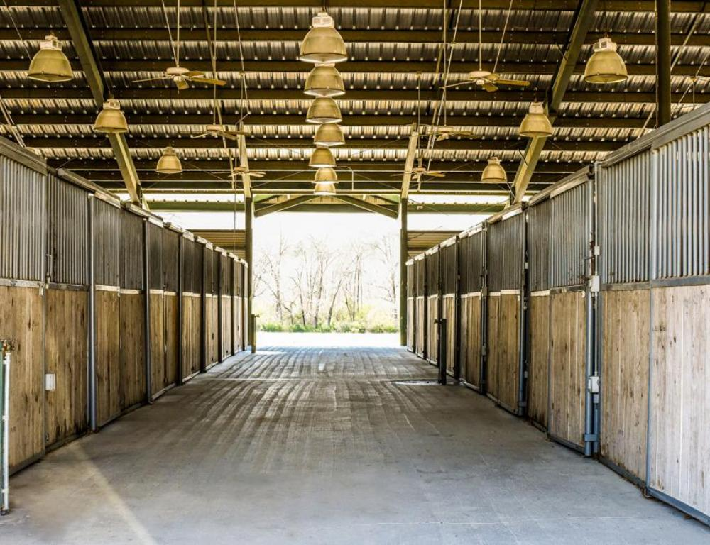 Six barns with 190+ stalls available