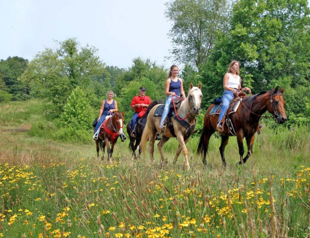15+ miles of Horse Riding Trails