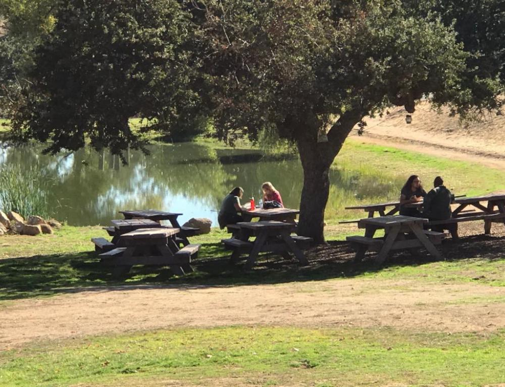 Outdoor picnic benches, view of pond