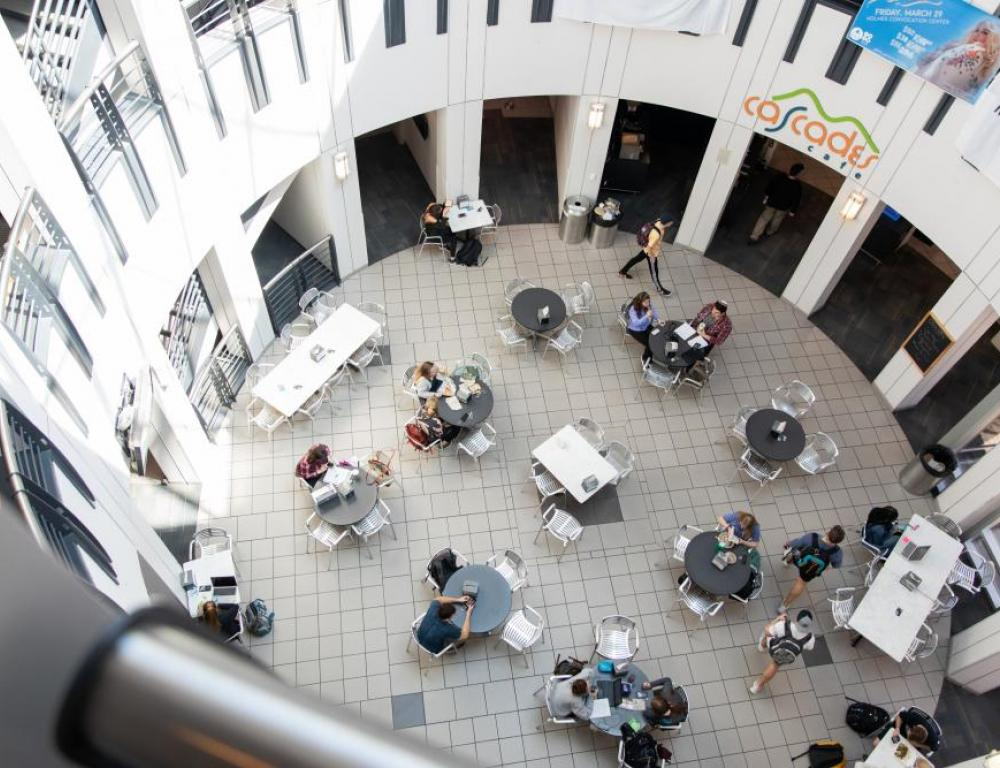 The Plemmons Student Union features a number of flexible meeting spaces as well as coffee shop and cafe.