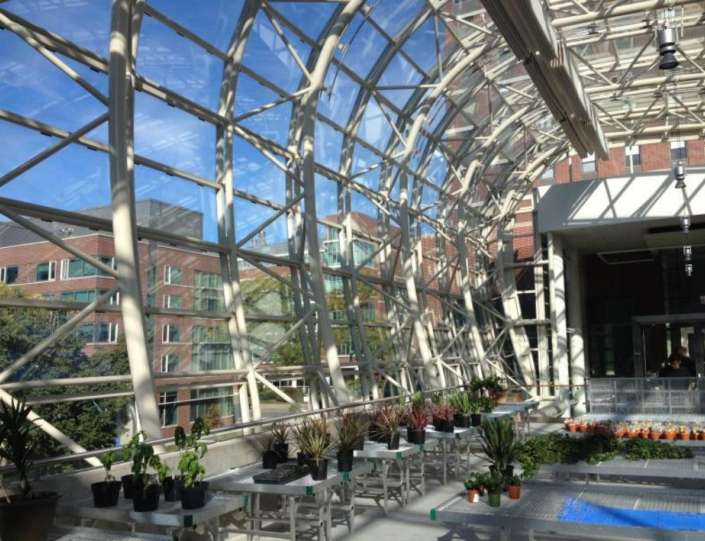 Greenhouse in the Institute for Environmental Sustainability at Lake Shore Campus