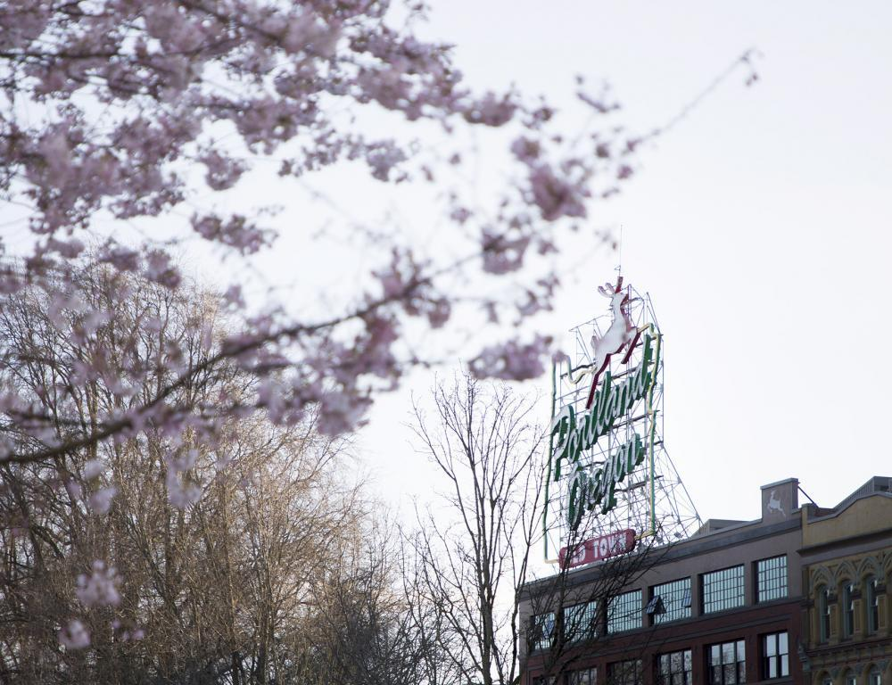 Portland State University is in the heart of beautiful, trendy Portland, Ore.
