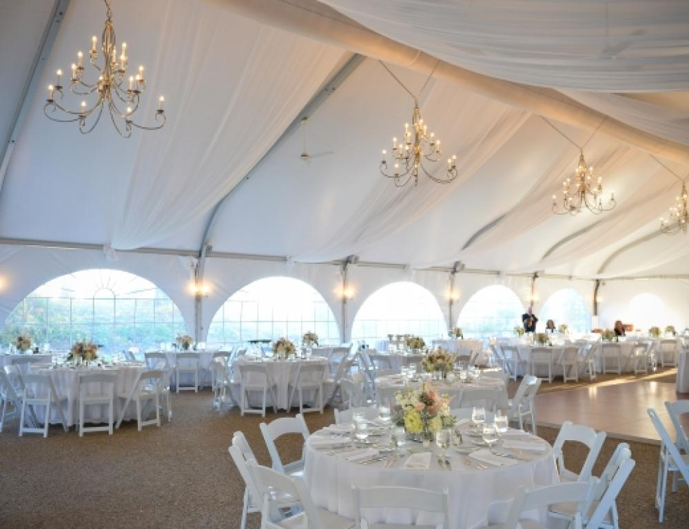 Inside the Misselwood Tent