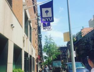 NYU Wasserman Center